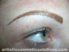 Full Eyebrow Creation (Hairstroke Technique)