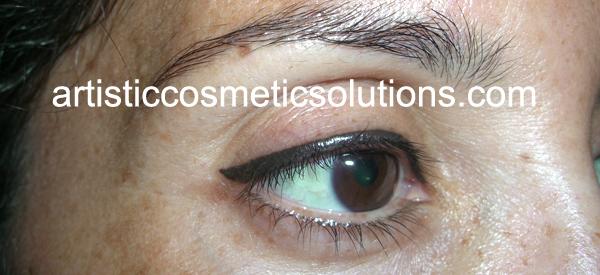 Permanent Cosmetic Makeup Eyeliner
